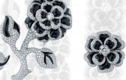 Camellia Brooch by chanel